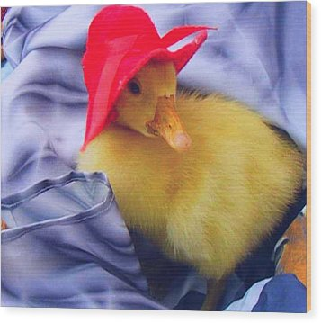 Wood Print featuring the painting Dodo With Red Hat by Bogdan Floridana Oana
