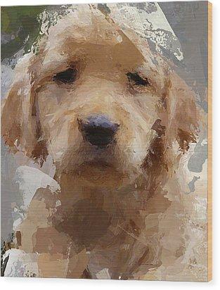 Dog 1 Wood Print by Yury Malkov