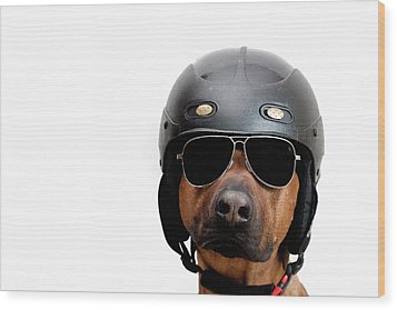 Dog Dressed As Police Man Wood Print by Ty Foster