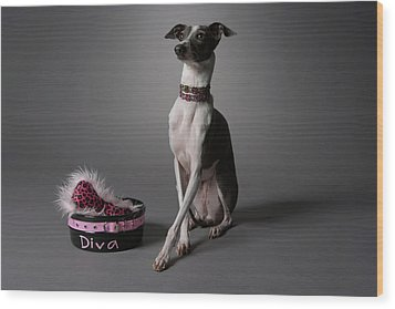 Dog With Diva Bowl Wood Print by Chris Amaral