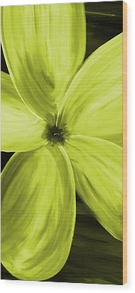 Dogwood Bloom Yellow Wood Print by Mark Moore
