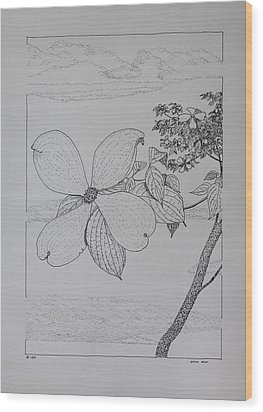 Wood Print featuring the drawing Dogwood  by Daniel Reed
