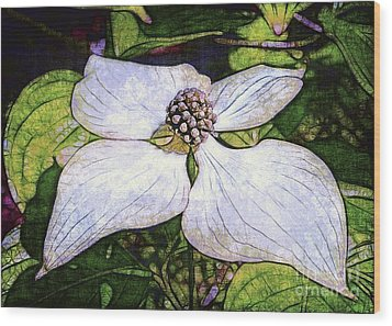 Dogwood Days Wood Print by Judi Bagwell