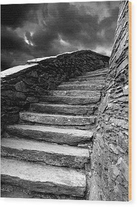 Dolbadarn Castle Steps Wood Print by Duncan Rowe