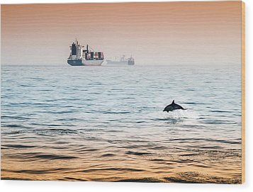 Dolphing Playing In The Sunset Wood Print by Stephen McCluskey