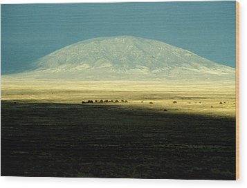 Wood Print featuring the photograph Dome Mountain by Brent L Ander