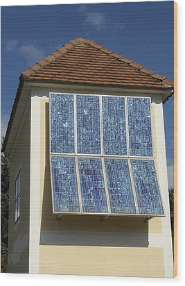 Domestic Solar Panel Wood Print by Friedrich Saurer