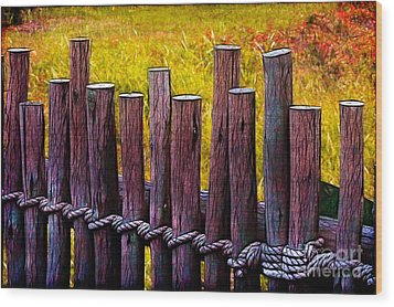 Don't Fence Me In Wood Print by Judi Bagwell