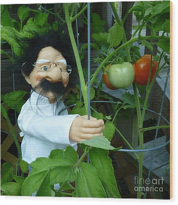 Wood Print featuring the photograph Dorf Chef Doll With Tomatoes by Renee Trenholm