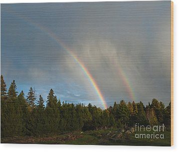 Double Blessing Wood Print by Cheryl Baxter