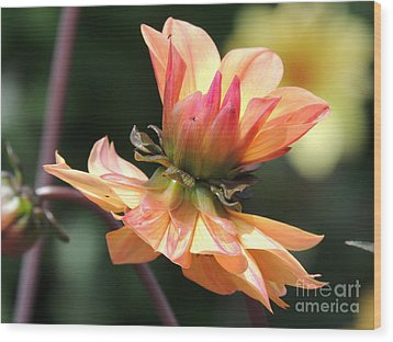 Wood Print featuring the photograph Double Floral by Eve Spring