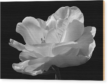 Wood Print featuring the photograph Double Late Angelique Tulip by Darleen Stry