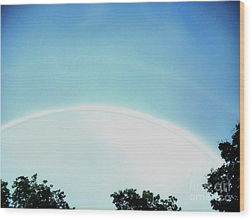 Double Rainbow After The Storm Wood Print by Marsha Heiken