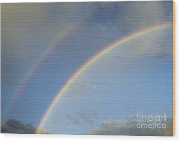 Double Rainbow Wood Print by Sami Sarkis