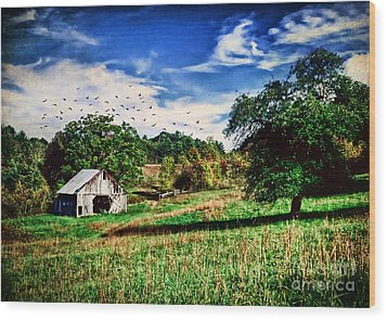 Down On The Farm Wood Print by Darren Fisher