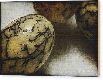 Dragon Eggs Wood Print by Judi Bagwell