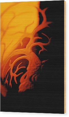 Dragonfire Wood Print