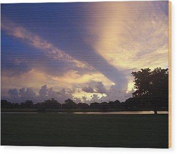Dramatic Sky Wood Print by Sheila Silverstein