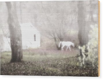 Wood Print featuring the photograph Dream Horse by Marianne Campolongo