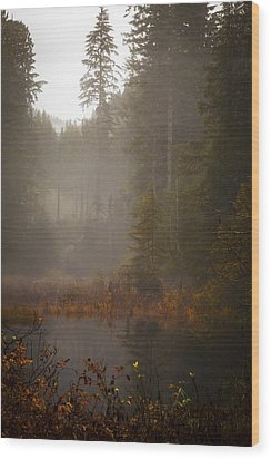 Dream Of Autumn Wood Print by Mike Reid