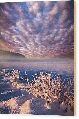 Dream Of Waking Wood Print by Phil Koch