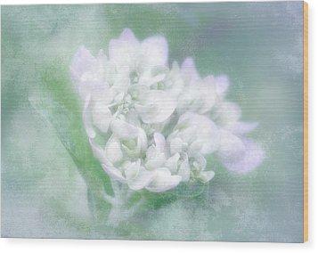 Dreaming Floral Wood Print by Brenda Bryant