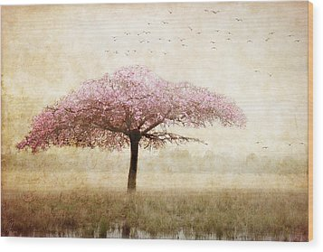 Dreaming Wood Print by Margaret Hormann Bfa