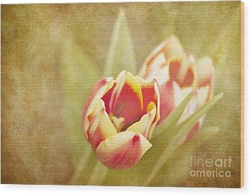 Dreaming Of Spring Wood Print by Cheryl Davis
