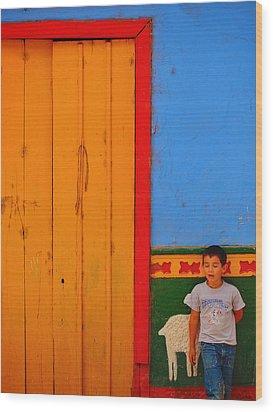 Dreams Of Kids Wood Print by Skip Hunt