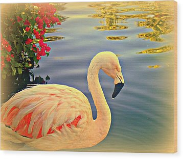 Dreamy Flamingo Wood Print by Kevin Moore