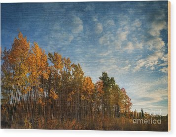 Dressed In Autumn Colors Wood Print by Priska Wettstein