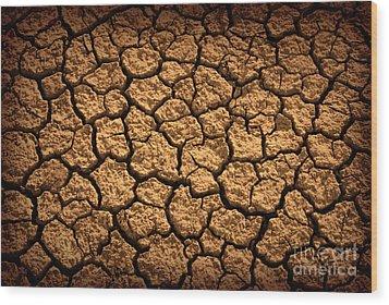 Dried Terrain Wood Print by Carlos Caetano