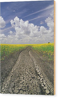 Dried Up Machinery Tracks Wood Print by Dave Reede