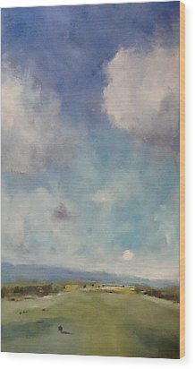 Drifting Clouds Over Arreton Valley Wood Print by Alan Daysh