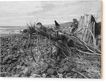 Driftwood And Rocks Wood Print