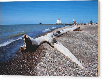 Wood Print featuring the photograph Driftwood At Erie by Michelle Joseph-Long