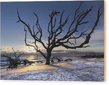 Driftwood Beach At Dawn Wood Print by Debra and Dave Vanderlaan