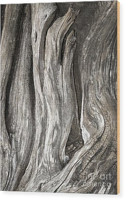 Driftwood Design 53 Wood Print by Larry Lawhead