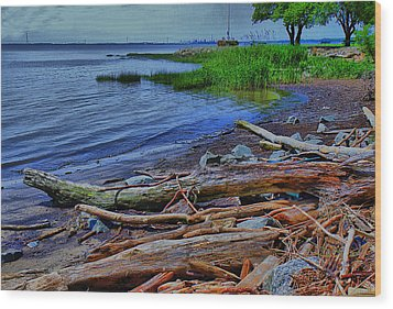 Driftwood On Shore Wood Print by Trudy Wilkerson