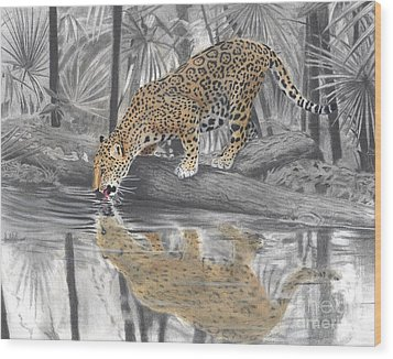 Drinking Jaguar Wood Print