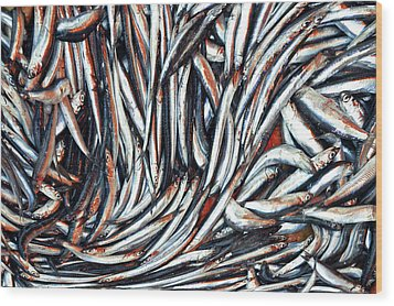 Dripping Fish Wood Print by Maria Luisa Corapi