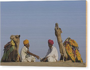 Dromedary Camelus Dromedaries Pair Wood Print by Pete Oxford