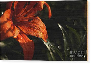 Wood Print featuring the photograph Droplets On Flower by Vilas Malankar
