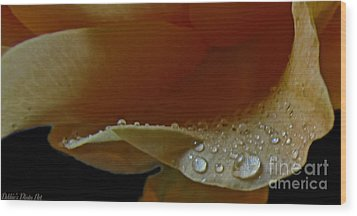 Wood Print featuring the photograph Drops Of Light by Debbie Portwood