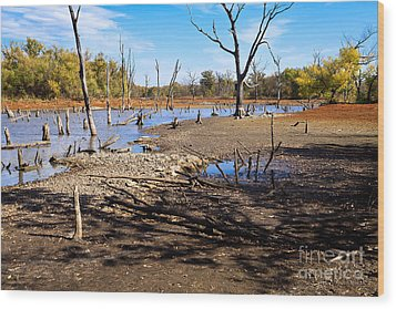 Drought In The Flint Hills Wood Print by Lawrence Burry
