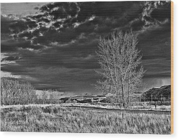 Drumheller Valley In Black And White Wood Print by Jim Justinick