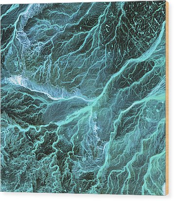 Dry River Beds, Satellite Image Wood Print by Nasa