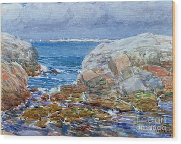Duck Island Wood Print by Childe Hassam