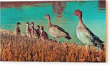 Ducky Family Wood Print by Bernard Yong