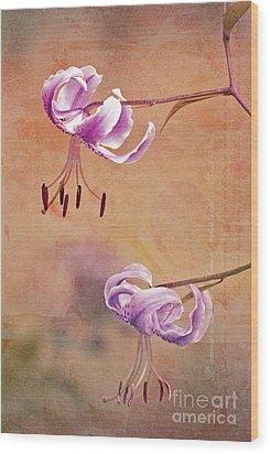Duet 05c Wood Print by Aimelle
